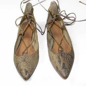 Snakeskin Lace Up Pointed Toe Ballet Flats
